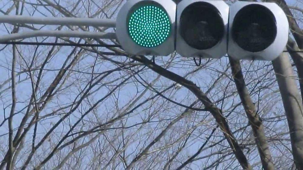 feu vert japonais un peu bleuté