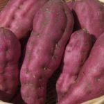 Satsumaimo (薩摩芋) : la patate meilleure qu'une châtaigne !