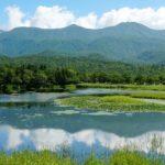 Shizen (自然) : la nature est-elle naturelle ?