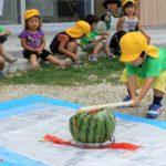 Suika (西瓜・スイカ) : la pastèque, cette «cucurbitacée de l'ouest»